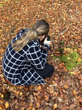 Paddenstoelen fotograferen